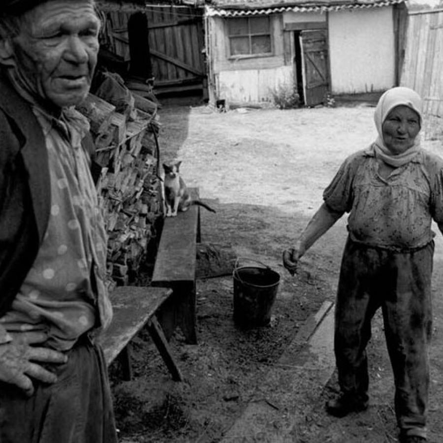 BeeKeepers Chernobyl