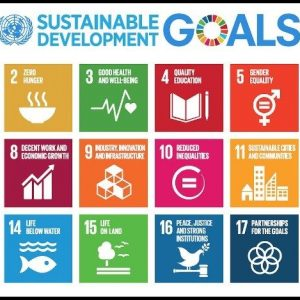 Comhlamh Sustainable Development Goals