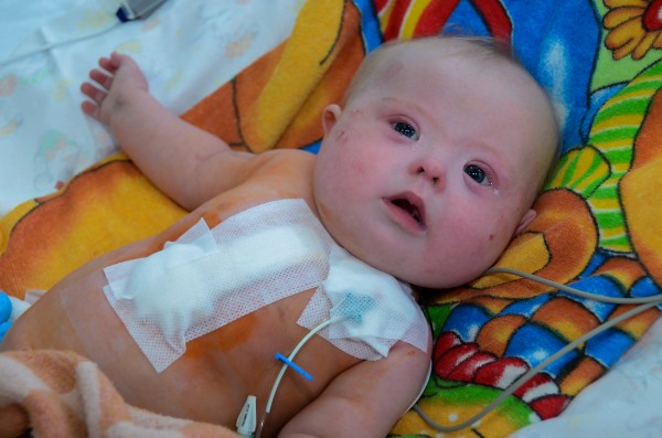Albina 6 months CCI